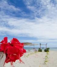 Treasure Island Resort Fiji – Beach Wedding