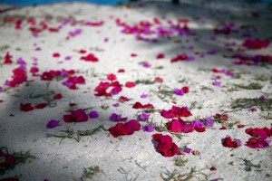 fiji-wedding-flowers-for-aisle1