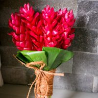 fiji-wedding-flowers-ginger-red
