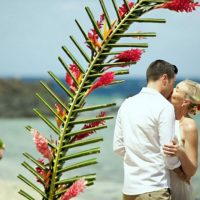 wedding-arch-fiji